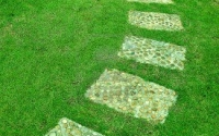12027986-the-stone-block-walk-path-in-the-park-with-green-grass-background