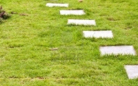 15478816-stone-block-walk-path-in-the-park-with-green-grass-background